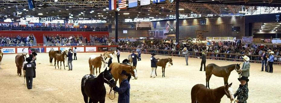 le salon du cheval de Lyon
